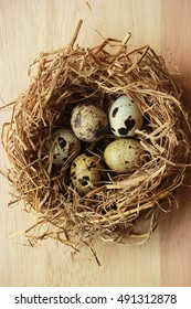 Quail egg in a nest on wooden background , Top view, close up. Healthy food concept.