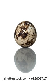 quail egg standing vertical isolated over white background