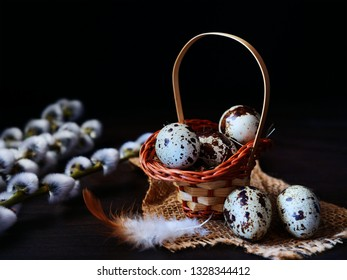 Quail eggs in basket with pussy willow over dark background. Easter concept.