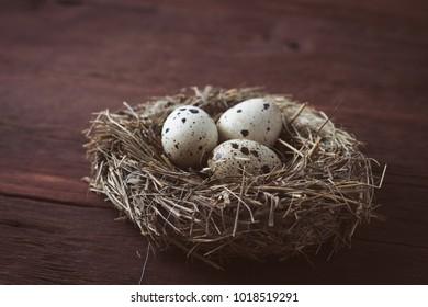 Quail eggs in bird nest on wooden table.