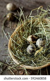 Quail eggs, bokeh