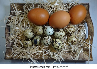 Quail eggs and  chicken eggs  - Easter composition.Easter Tradition - Selective focus