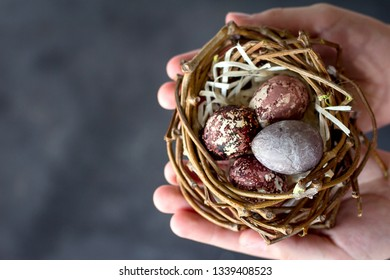 Quail eggs in children's hands. Painted quail eggs for the holiday Easter. Easter painted eggs