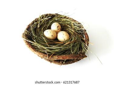 Quail eggs decoration on white background / Quail eggs in the nest