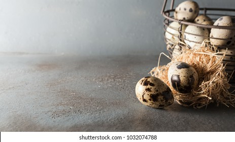 Quail eggs in metal basket on rustic grey board. free text space.