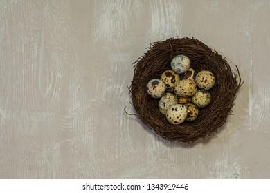 quail eggs in nest on light wooden background