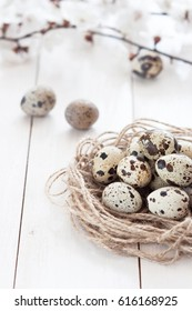 Quail eggs in a nest with spring flowers on a white rustic wooden background. The concept of a healthy diet.