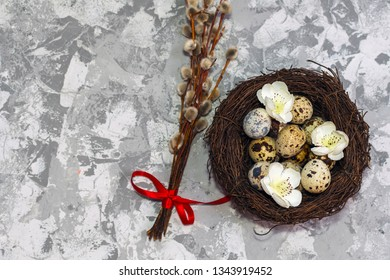 quail eggs in the nest and willow branch. happy Easter concept