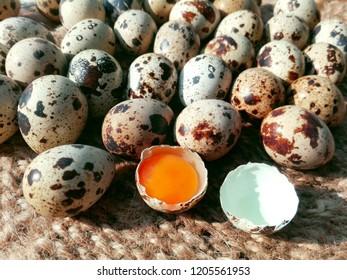 Quail eggs on table sackcloth. Fresh quail eggs from organic bird farm for sale in market. Black & white spotted quail eggs shell & orange yolk on sackcloth napkin. Diet children healthy food concept
