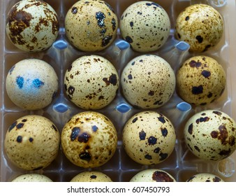 quail eggs in the tray food