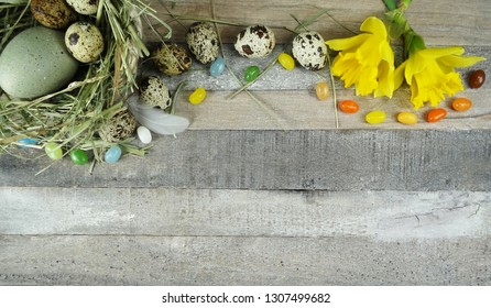 Quail and stone eggs in nest with a colerful composition with daffodils/narcissus at wooden background