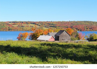 Quaint country houses  surrounded by colorful autumn leaves with dirt road and blue sky in Kings Landing, New Brunswick, Canada