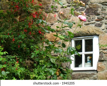 Quaint stone cottage wall with flowers and window