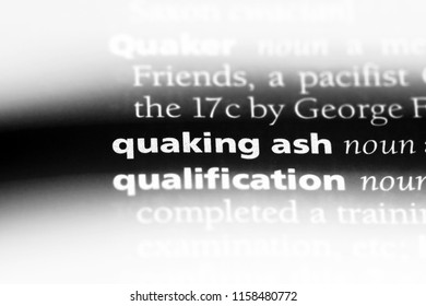 quaking ash word in a dictionary. quaking ash concept.