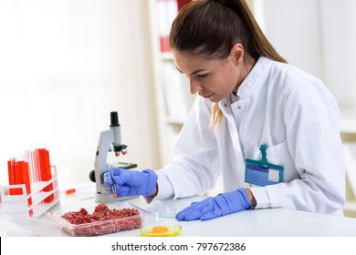 Quality control expert inspecting at food specimen, checking meat and eggs
