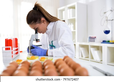Quality control expert inspecting at food specimen, contorl chicken eggs