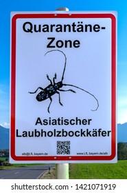Quarantine zone Asian longhorned beetle, Anoplophora Glabripennis, warning sign, Murnau, Upper Bavaria, Bavaria, Germany, Europe, 16.October 2018