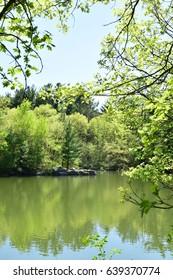Quarry Water Nature Landscape