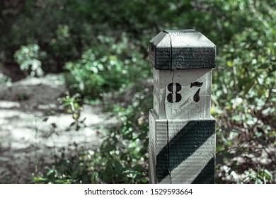 Quarter pillar. Striped quarterly pillar in the forest