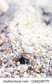 Quartz sand, Mari Ermi beach, Sardegna, Italy