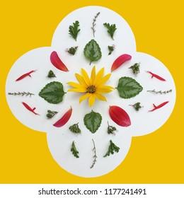 Quatrefoil floral mandala