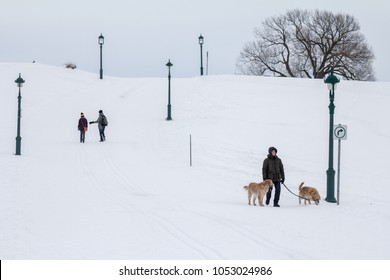 QUEBEC, CANADA - DECEMBER 26, 2016: Man walking a dog in the plains of Abraham (Plaines d'Abraham) under heavy snow during the Canadian winter.