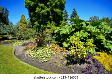 QUEEN ELIZABETH PARK - JULY 2018 Vancouver's 13-acre garden, located on the most higher Vancouver's spot at Little Mountain by Shaughnessy. Park was created 1939, is operated by the City of Vancouver.