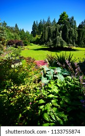 QUEEN ELIZABETH PARK - Vancouver's 13-acre garden, located on the most higher Vancouver's spot at Little Mountain by Shaughnessy. Park was created at 1939 and is operated by the City of Vancouver.