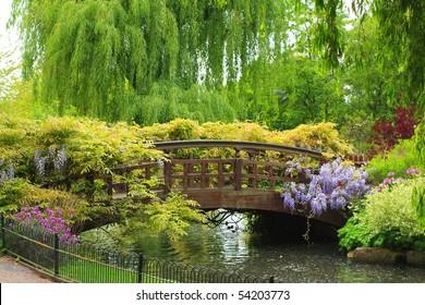 Queen Mary's Garden, London