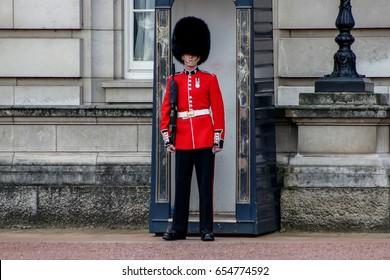 Queen's Guard / Buckingham Palace / London / UK / May 2017