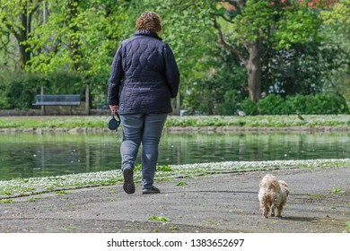Queens Park Blackburn, Lancashire/England - 29.04.2019 - Woman walking her dog in the park lake and trees in the background