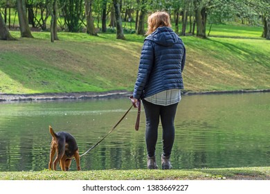 Queens Park Blackburn, Lancashire/England - 29.04.2019 - Woman walking waits while her dog takes a drink