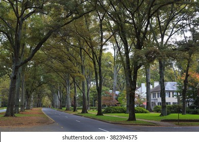 Queens Road West in Charlotte North Carolina during the fall season
