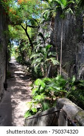 The Queen's Staircase in Nassau, Bahamas, also known as the 66 steps, was carved out of solid limestone rock by slaves between 1793 and 1794.