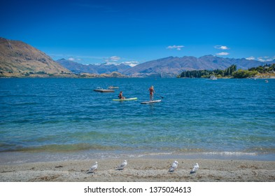 Queenstown , New Zealand, Feb 7th, 2019: Sup at Roys Bay, Wanaka