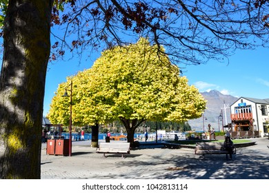 Queenstown , NEW ZEALAND - May 3, 2016: Queenstown in the fall