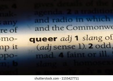 queer word in a dictionary. queer concept.