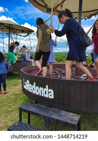 Queretaro, Queretaro /Mexico - July 18, 2016: four kids and an adult woman happily walk around pressing grapes to make wine old style  at La Redonda vineyard in Mexico.