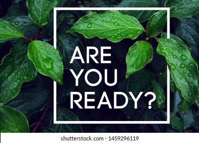 Question to the person are you ready? Start something new, start a new life, find your way