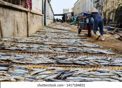 Qui nhon, Vietnam- Mar 13,2017: A woman is pushing her cart of fishes.