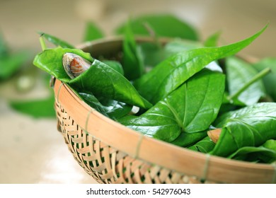 Quids of betel and areca nut in bamboo basket