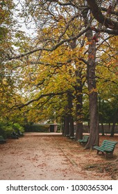 Quiet alley of Thabor gardens of Rennes, one of France's most beautiful public parks, in autumn