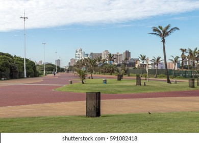 Quiet early morning paved promenade lawn and palm trees against city skyline in Durban, South Africa