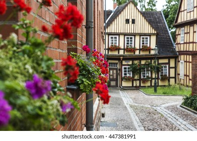 Quiet european street, strewn with flowers on a rainy summer day