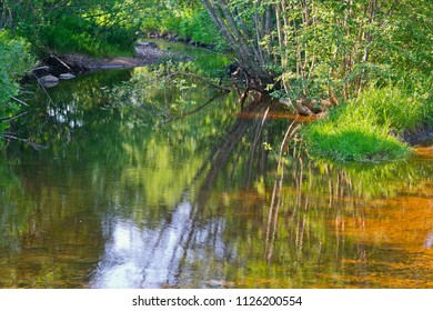 Quiet forest river in the summer morning colorful reflections.