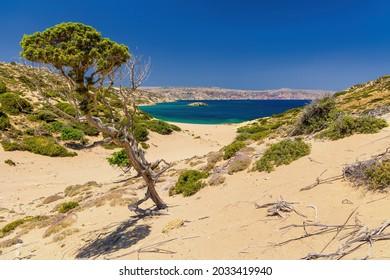 Quiet, hot sandy beach in scrub landscape leading towards a clear ocean (Psili Ammos, Crete)