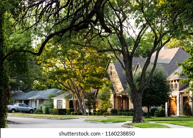 Quiet Neighborhood street with trees on a summer morning