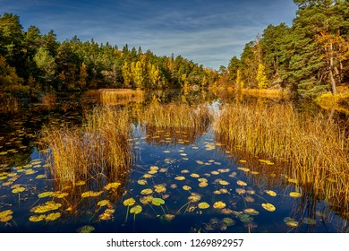 a quiet place in the nature in a european northern country, Sweden, Bagarmossen