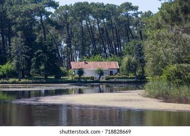 Quiet retreat on Lacanau Lake, Gironde