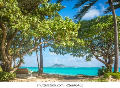 A quiet, shaded bench overlooking the beautiful emerald green waters of Kailua Bay on the island of Oahu, Hawaii.
